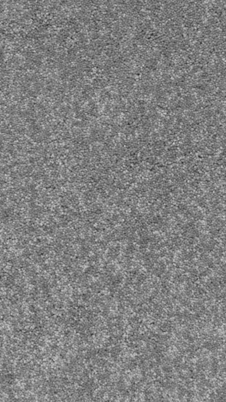 Ковролин Gera 1071